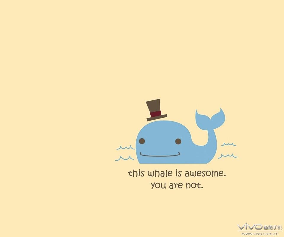 【小蓝鲸】可爱的海洋动物