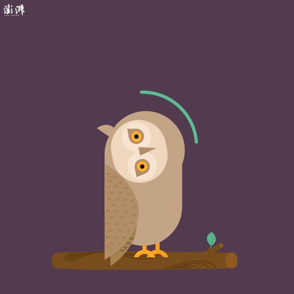 这个这是可爱的猫头鹰