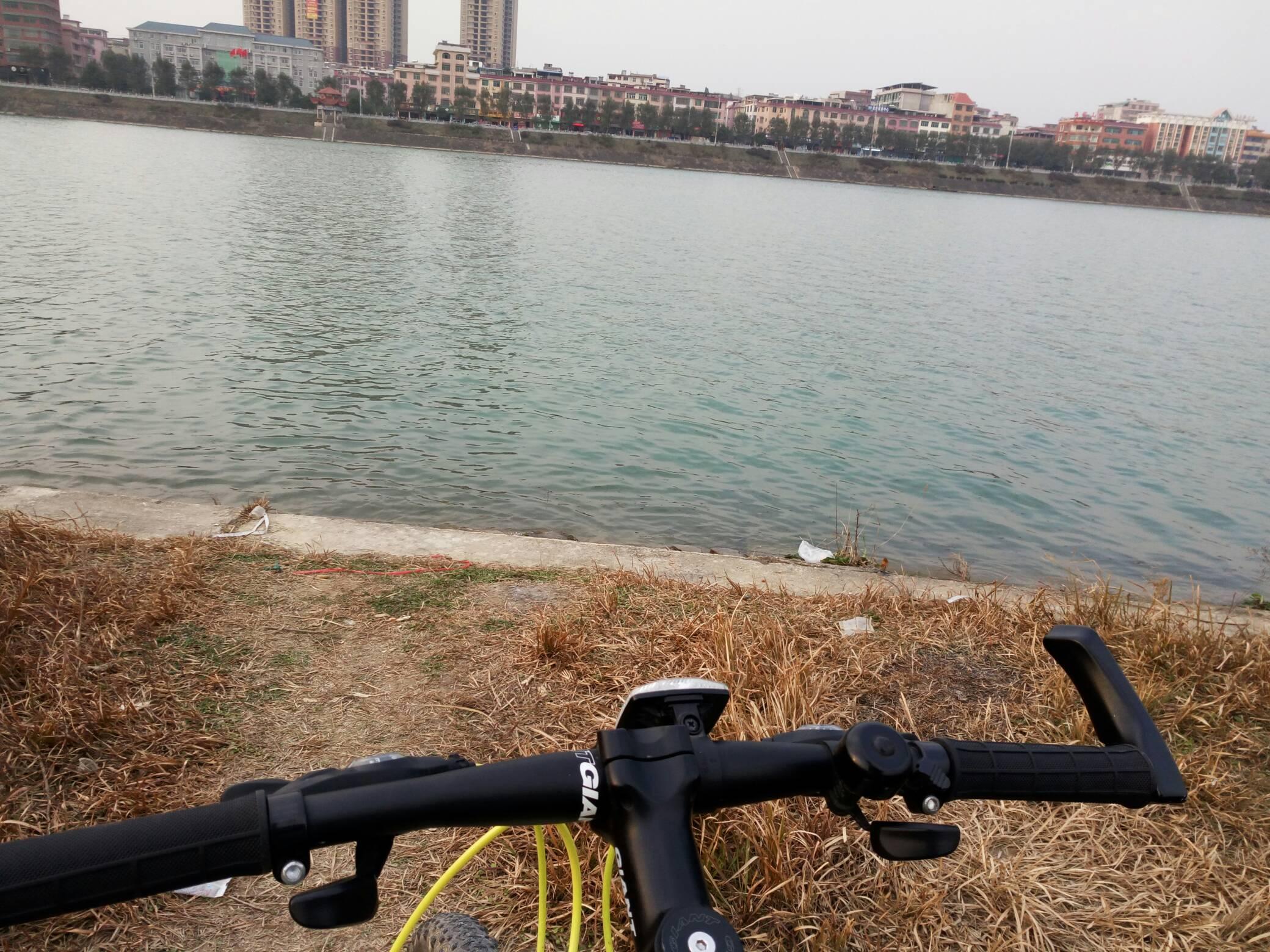 骑车逛城市风景