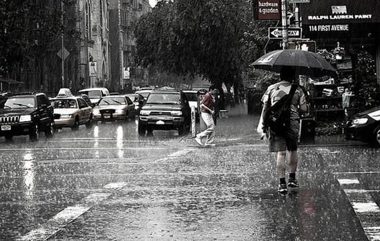 风景下雨 意境