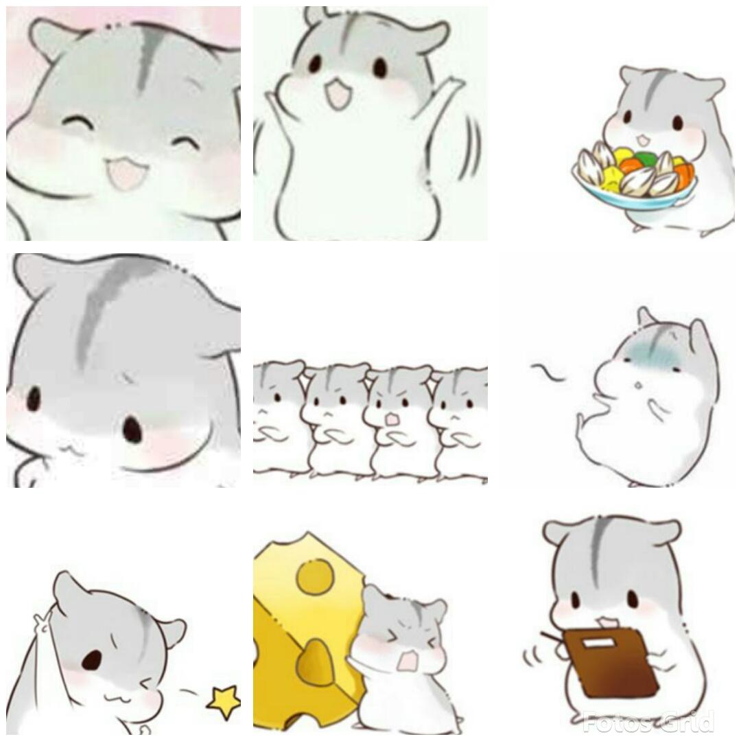 【v粉表情包】可爱的仓鼠无字版,超可爱