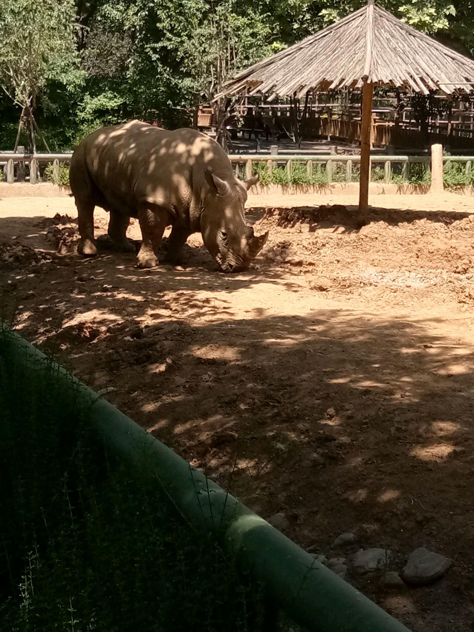 郑州雁鸣湖野生动物园有限责任公司 联系电话_114百事通