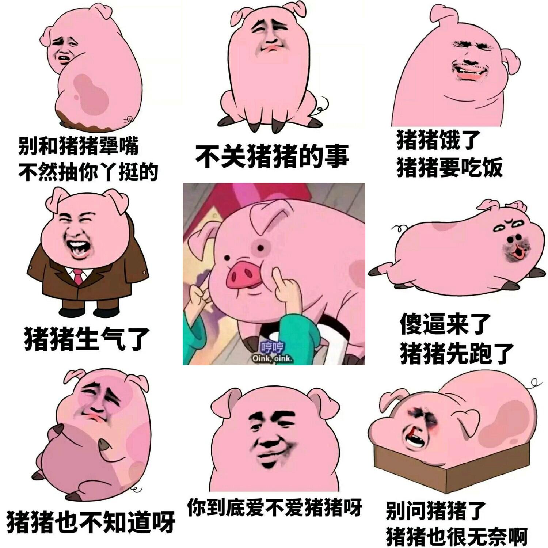 搞笑可爱的猪猪图片