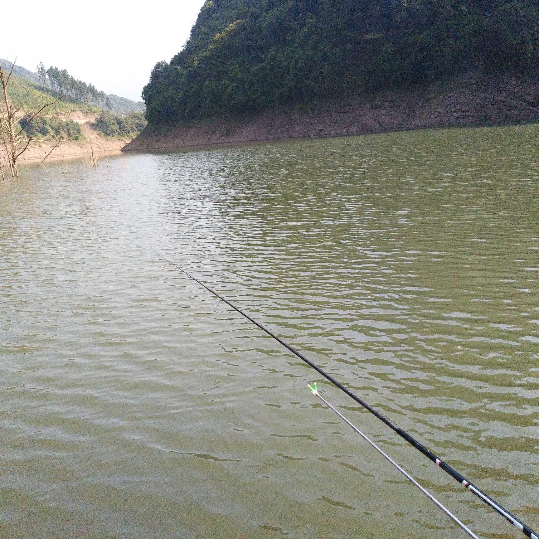 gif动图素材 钓鱼