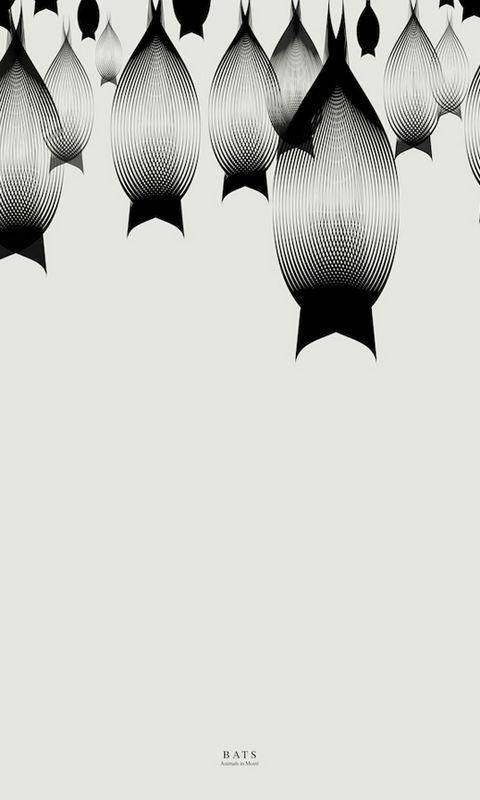 〔v粉主题素材壁纸〕创意黑白动物