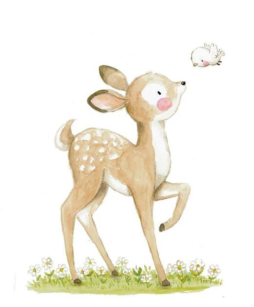 【v粉主题】萌萌哒的小动物