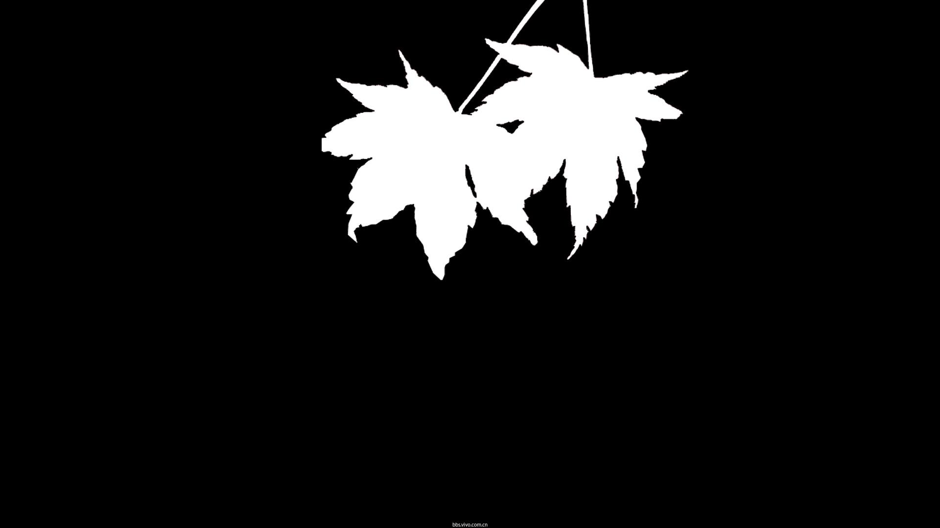 【v粉主题素材壁纸】枫叶剪影壁纸