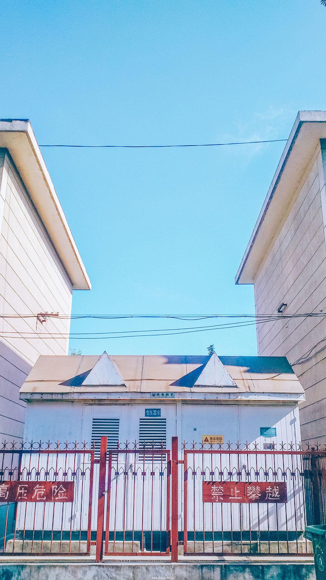 【v 粉主题素材壁纸】小清新唯美校园风景