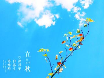 【秋之味】秋日轻私语