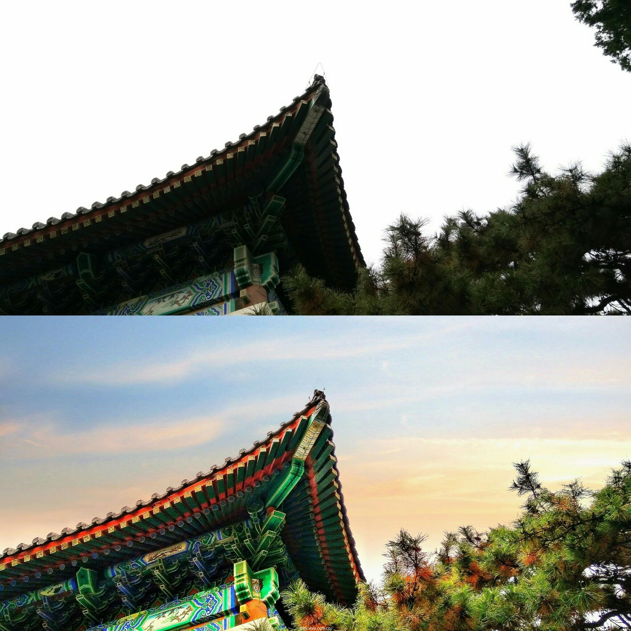 PicsArt_11-25-08.10.39.jpg