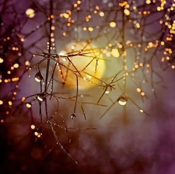 【摄影教程】构图、角度加渐变镜,拍出唯美日落……