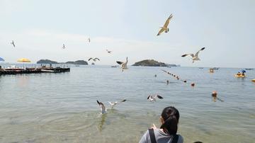 vivo X9海滨散步