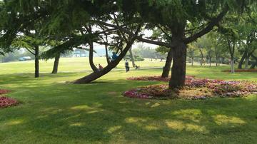 vivo  X9 星海公园