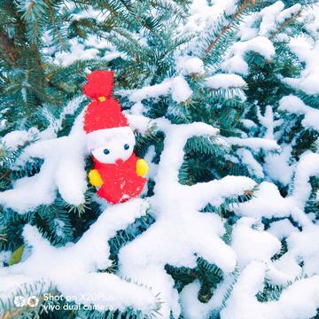 【摄影达人·X20Plus】一场雪