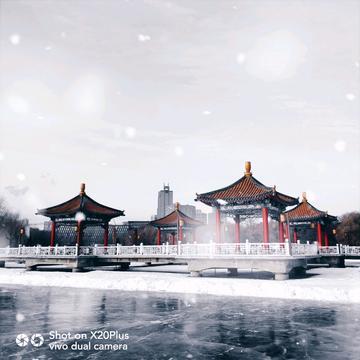 【中国好风光】飘雪