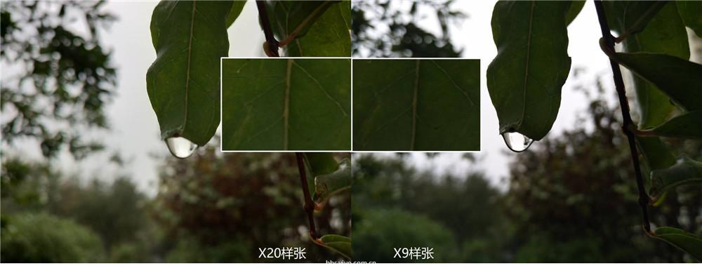 样张3.jpg
