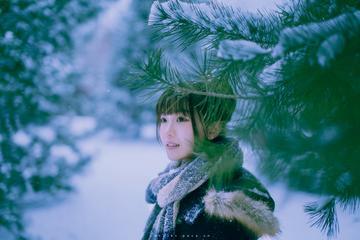 人在雪中雪映人