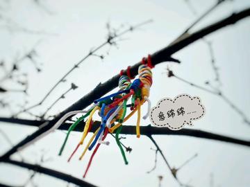 【vivoX7PIUS摄】色彩版下的【广仁寺】
