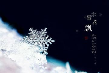 【vivo X9】雪花飘
