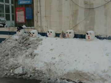 【 随手拍雪景】偶然间的路过