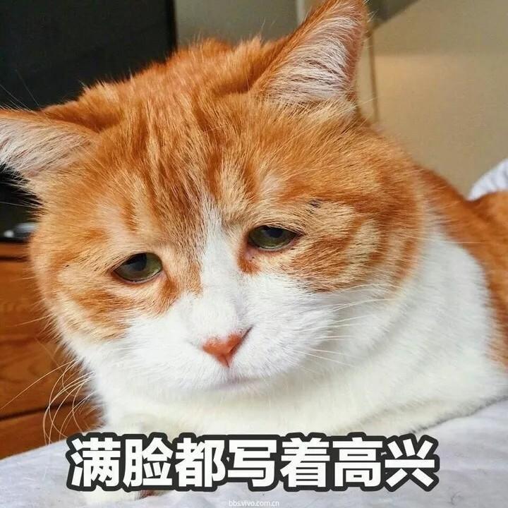 640_结果.jpg