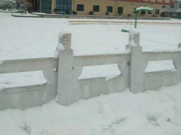 【随手拍雪记】+学校的雪