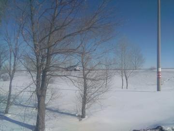 随手拍雪景我的家乡