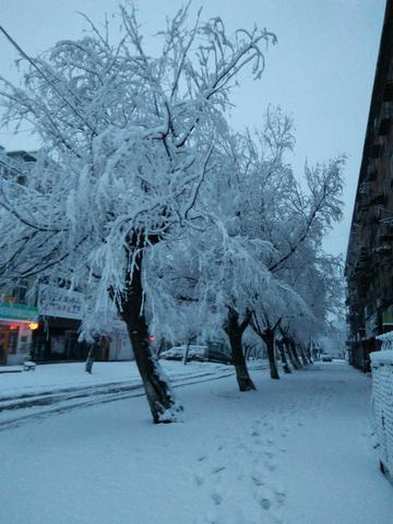 【初春记】春天里的大雪