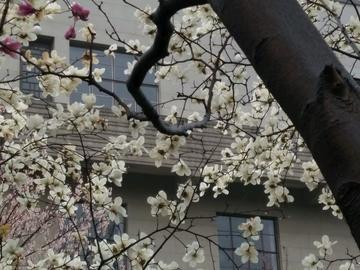 春天来了,夏天近了