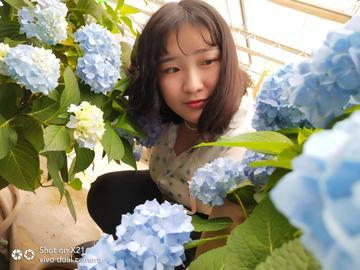 [vivo x21]初夏,那一抹蓝色