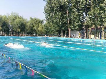 夏天快要结束游泳大赛很愉快