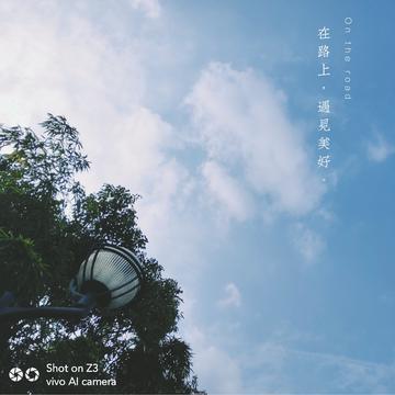 【Z3】落叶知秋,一年又一年。