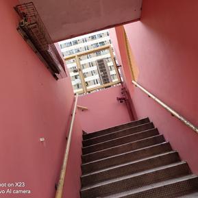 带着手机去旅行-香港篇:vivo X23游览香港网红拍照点,大...