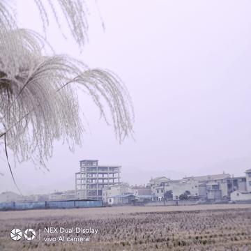 【NEX双面屏】NEX双面屏镜头里的陕南乡村冬季风光