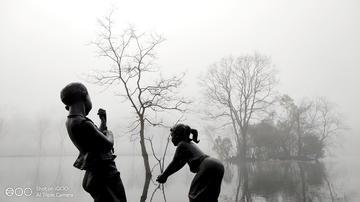 雾天,带上你的iQOO,拍出水墨画的感觉