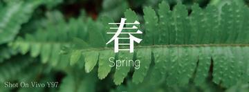 【寻春】春天·万物复苏