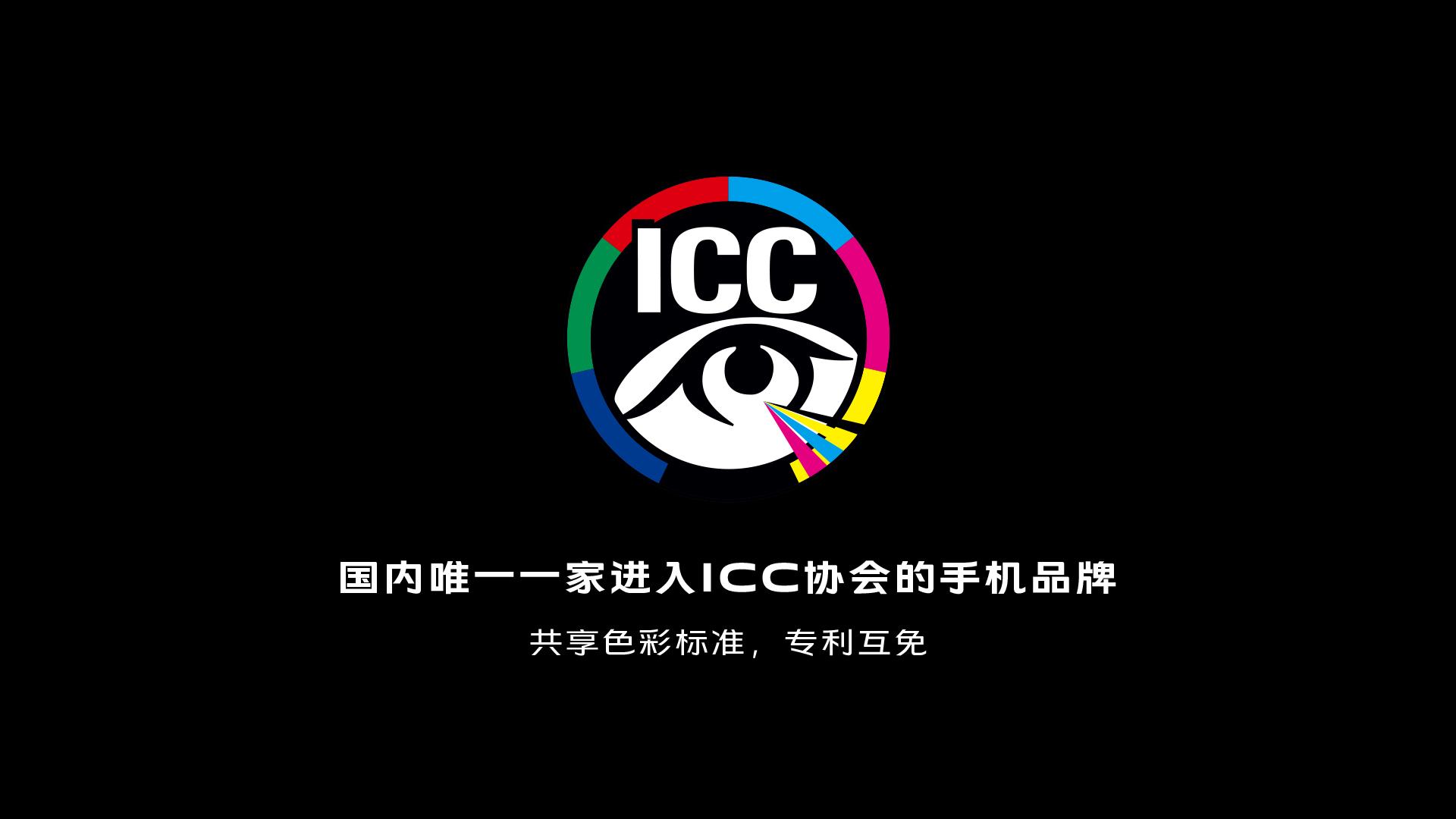 17-icc.jpg